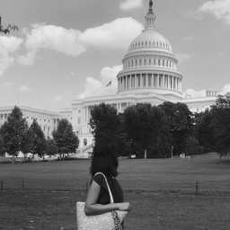 One Sizzling Day in Washington DC